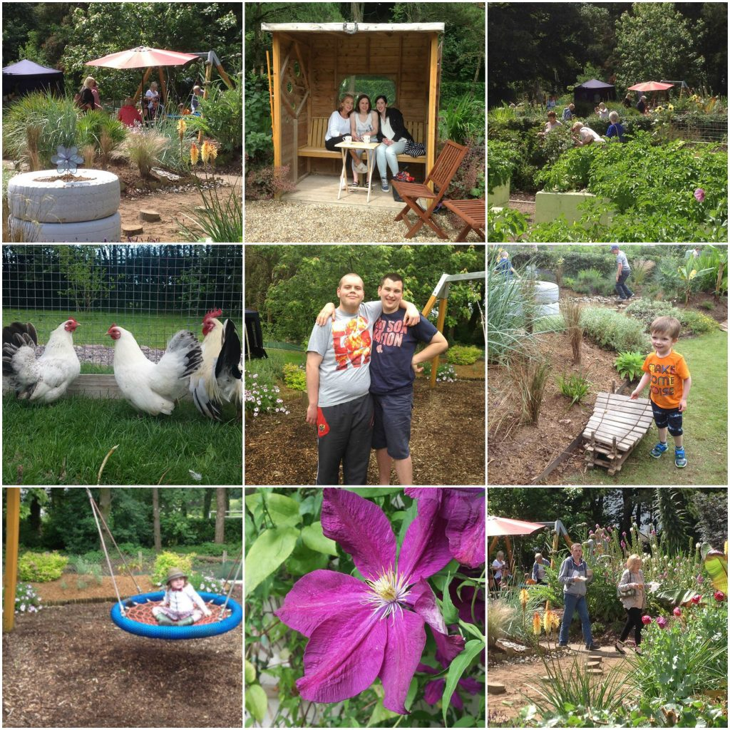 Open Gardens Collage